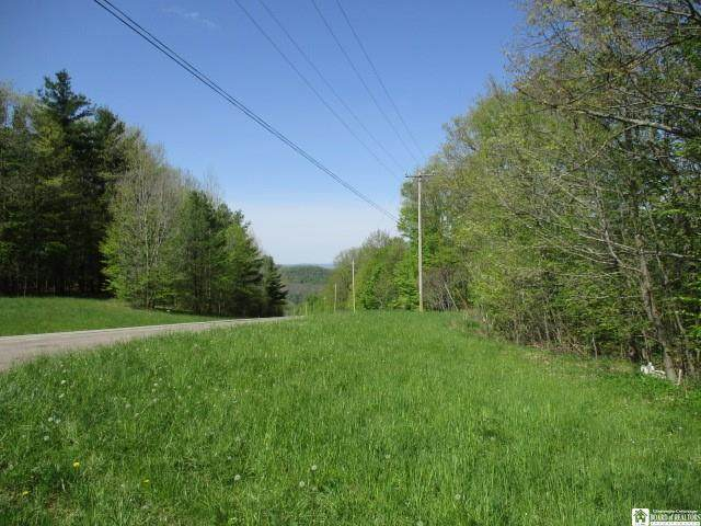 0 Daggett Hollow Road, Clarksville, NY 14715 (MLS #R1323619) :: BridgeView Real Estate