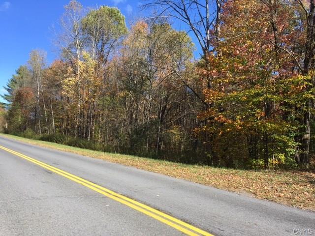 00 Osceola Road, Osceola, NY 13316 (MLS #S1082036) :: Thousand Islands Realty