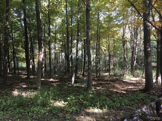 0 Irwin (Lots 36,37,38,39) Road, Sterling, NY 13156 (MLS #S1152004) :: Thousand Islands Realty