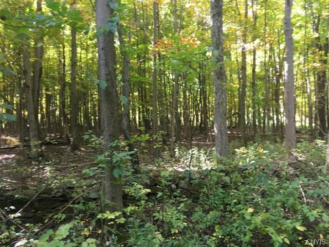 0 Irwin (Lots 43,44,45) Road, Sterling, NY 13156 (MLS #S1152012) :: Thousand Islands Realty