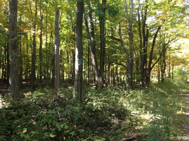 0 Irwin Road (Lots 40,41,42) Road, Sterling, NY 13156 (MLS #S1152031) :: Thousand Islands Realty