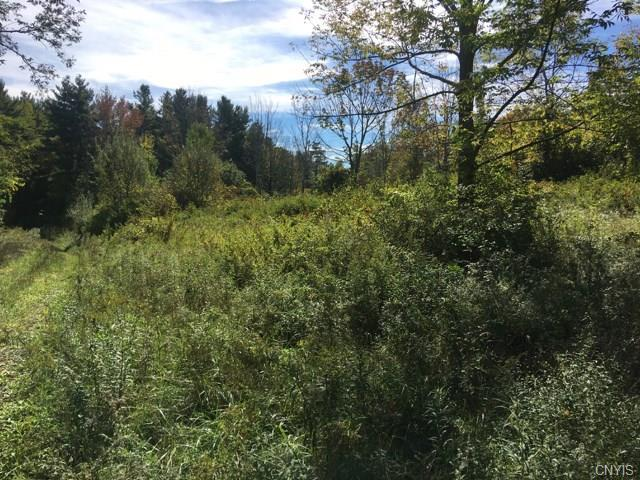 0 Irwin (Lot 46) Road, Sterling, NY 13156 (MLS #S1152062) :: Thousand Islands Realty