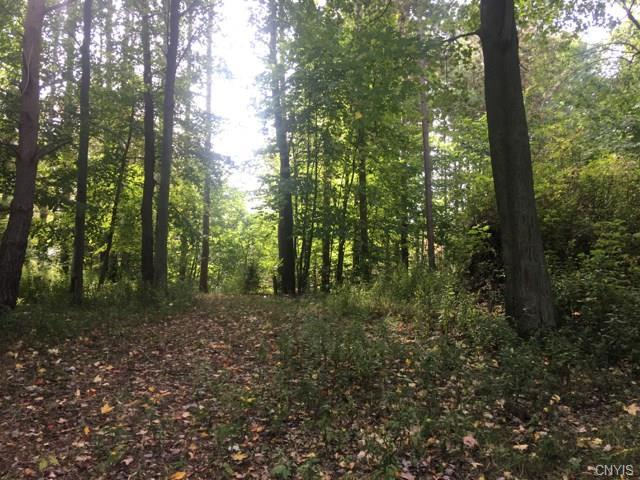 0 Ontario Shores (Lot 18) Drive, Sterling, NY 13156 (MLS #S1152065) :: Thousand Islands Realty