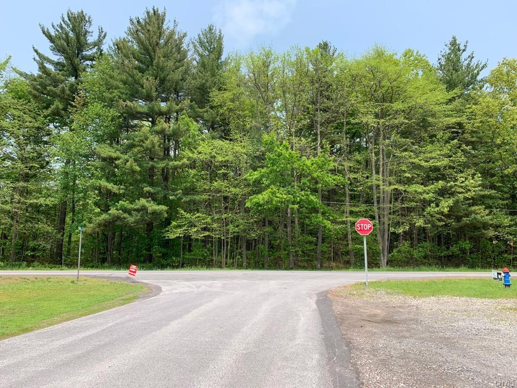 0 Nys Route 49 - Photo 1