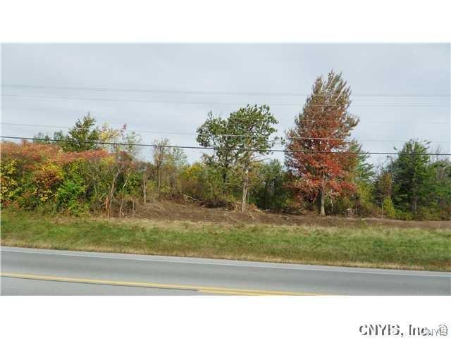 0 Nys Route 12, Alexandria, NY 13607 (MLS #S1190076) :: 716 Realty Group