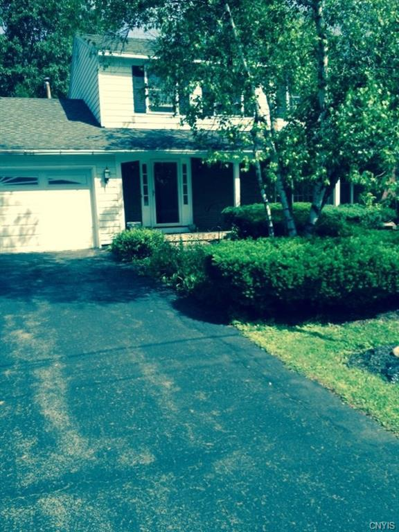 249 Marsh Drive, Dewitt, NY 13214 (MLS #S1202542) :: The Chip Hodgkins Team