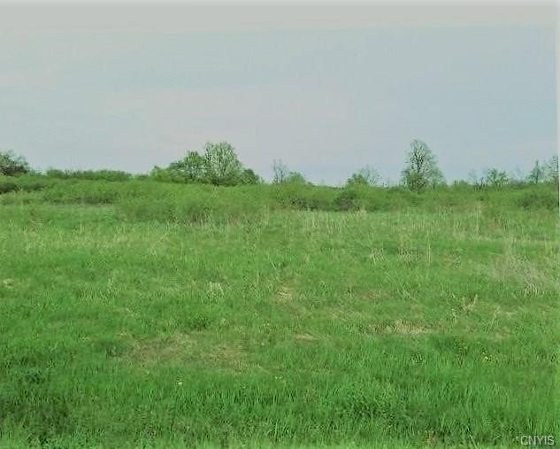 0 Contessa Lane, Brownville, NY 13615 (MLS #S1210510) :: BridgeView Real Estate Services