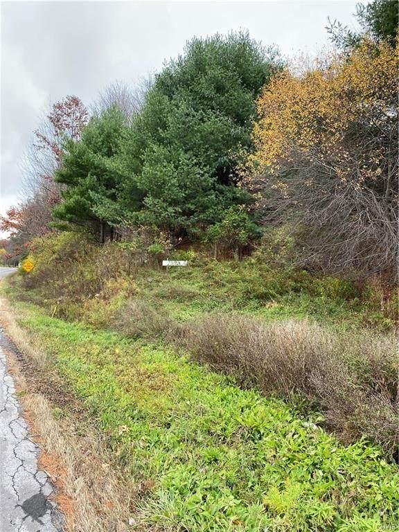 0 Route 20, Eaton, NY 13334 (MLS #S1248292) :: TLC Real Estate LLC