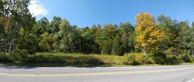 4715 Route 13 N, Cazenovia, NY 13035 (MLS #S1301264) :: BridgeView Real Estate Services