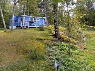 101 Jones Landing Road, Hammond, NY 13646 (MLS #S1364776) :: Thousand Islands Realty