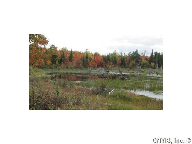 0 Off Drown Road, Clinton, NY 12935 (MLS #S341784) :: Thousand Islands Realty