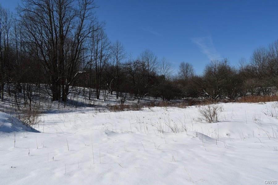 00 Fawn Lake Road - Photo 1