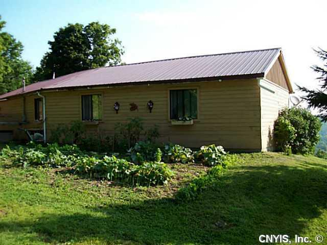 930 Riet Road, Otselic, NY 13464 (MLS #S318353) :: BridgeView Real Estate Services