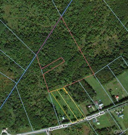 9503 Spencer Hill Road, Leyden, NY 13309 (MLS #S1318460) :: Serota Real Estate LLC