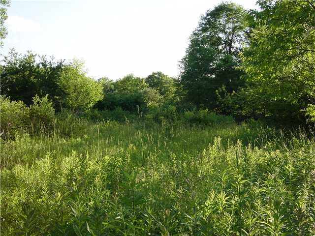 5 acres Hunters Creek Road, Wales, NY 14139 (MLS #B439336) :: The Rich McCarron Team