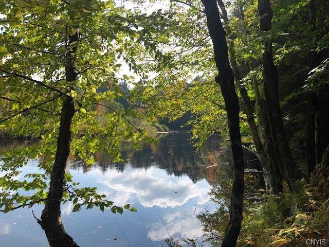 9050 Woods Road Road, Remsen, NY 13438 (MLS #S1209091) :: Thousand Islands Realty