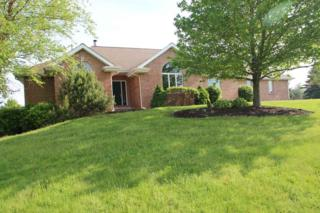 442 Overland Trail, Belvidere, IL 61008 (MLS #201703060) :: Key Realty