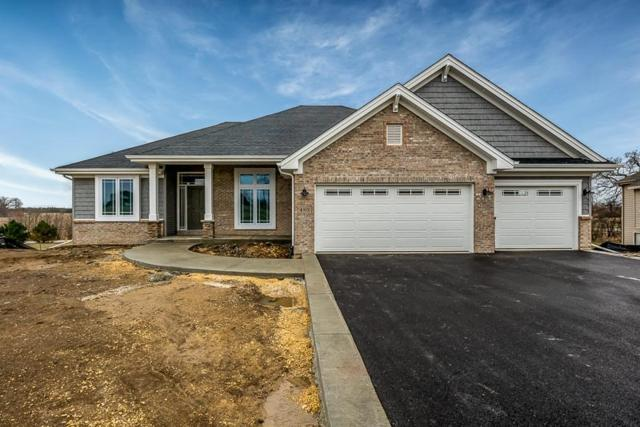 480 Burled Wood Drive, Poplar Grove, IL 61065 (MLS #201807879) :: HomesForSale123.com