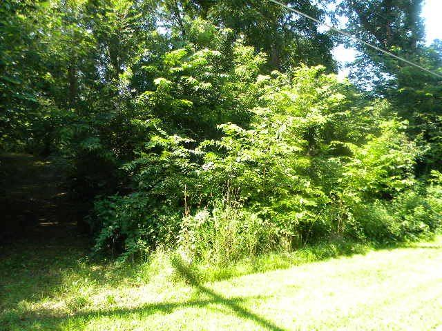 000 Edgemere Terrace Lot 5 Edgemere , Roscoe, IL 61073 (MLS #201800640) :: Key Realty