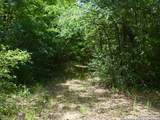 95.88 ACRES Fm 46 - Photo 24