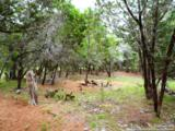 LOT 69 Tracie Trail - Photo 10
