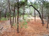 LOT 69 Tracie Trail - Photo 7
