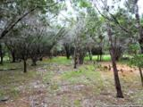 LOT 69 Tracie Trail - Photo 8