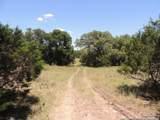 3020 Buck Meadow Trail - Photo 1