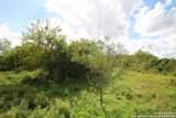 11508 & 15112 Galm Rd - Photo 1