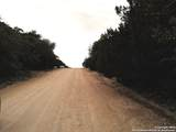 884 Brushy Creek Trail - Photo 3
