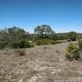 2366 Comal Springs - Photo 1