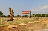 161 Medium Meadow Drive - Photo 18