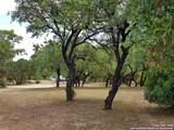 216 Live Oak Pl - Photo 38