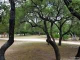 216 Live Oak Pl - Photo 41