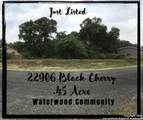 22906 Black Cherry - Photo 1