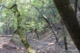 790 Caprock Rdg - Photo 17