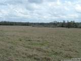 760 Cr 413A Tract 4 - Photo 10