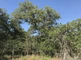 00000 Turkey Tree Trail - Photo 1