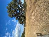 662 Martingale Trail - Photo 1