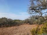 1154 Primrose Path - Photo 1