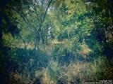1131 Santa Rita - Photo 3