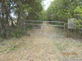 11025 AND 11278 Lower Seguin Road - Photo 3