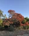 TBD Flat Creek - Photo 9