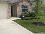 810 House Sparrow - Photo 1