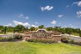 11019 Porter Springs - Photo 1