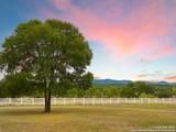 100 Palomino Springs - Photo 1