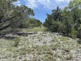 103 Jackson Creek - Photo 1