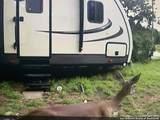 4237 Private Road 3080 - Photo 60