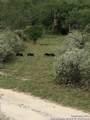 357 Cowboy Spur - Photo 17