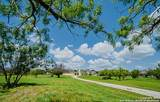246 Springtree Blf - Photo 1